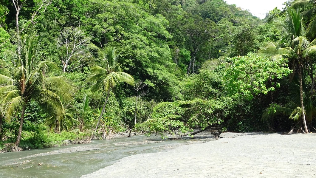 Corcovado National Park - amigos area conservación osa 7
