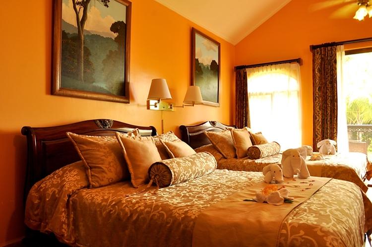 hotel-cuna-del-angel-ballenatales-dominical-southzone-costa-rica-13