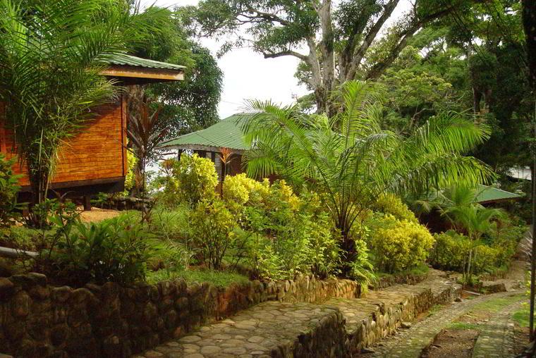#bar #restaurant #hotel #la-parcela #dominical #costa-ballena #costarica #hosting #rooms #nature #gardens