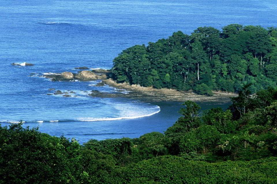 #bar #restaurant #hotel #la-parcela #dominical #costa-ballena #costarica #hosting #rooms #nature #oceanview #beach #cambutal #rock