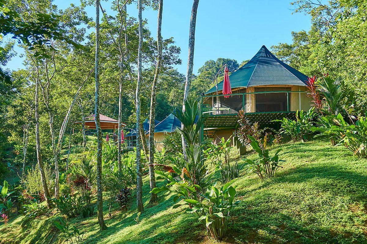 Manoas Luxury Camping, Uvita Hotel, Costa Rica, carpas (4)