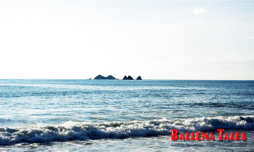 playa-pinuelas-isla-ballena