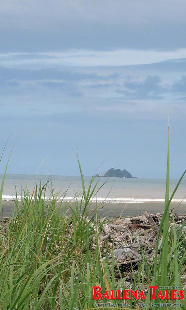 Playa-Tortuga-with-view-of-Isla-Ballena-by-Nikki-Whelan