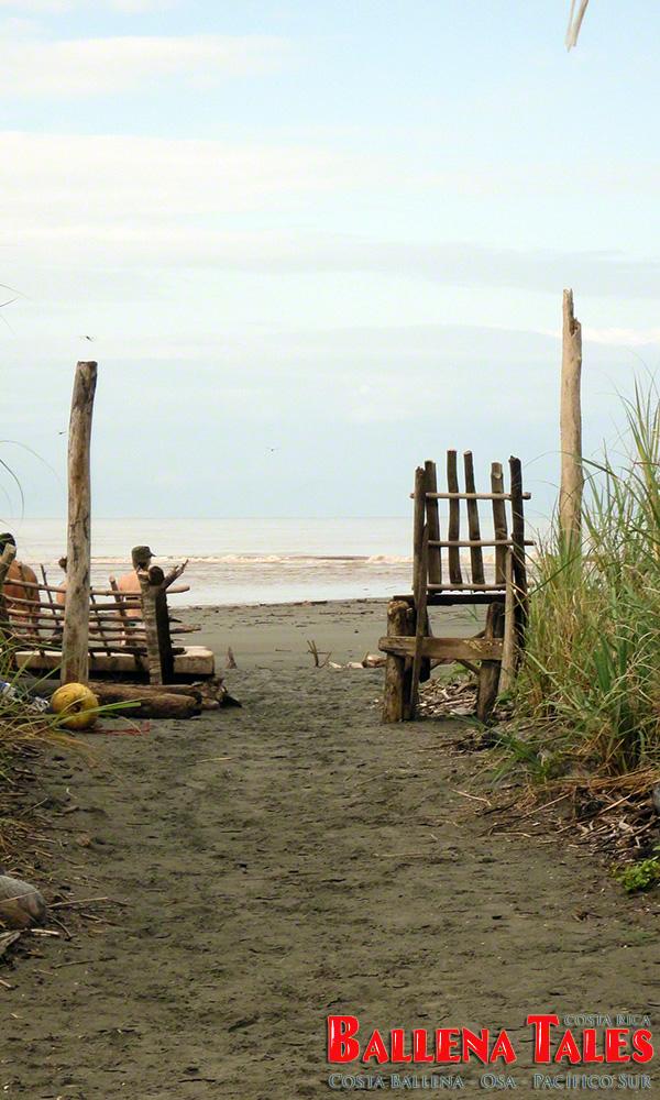 Reserva-Tortuga-at-Playa-Tortuga-by-Nikki-Whelan