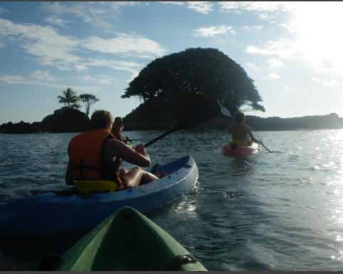 Dominicalito-SUP-tour-pineapple-tours-dominical-costaballenalovers-4