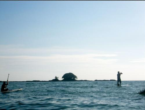Dominicalito-SUP-tour-pineapple-tours-dominical-costaballenalovers