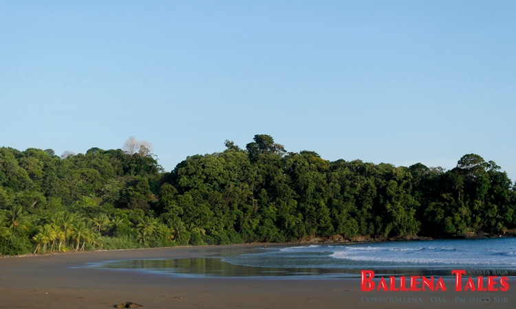 playa-ballena-costa-rica-7