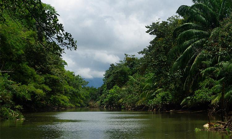 sierpe-mystic-river-1