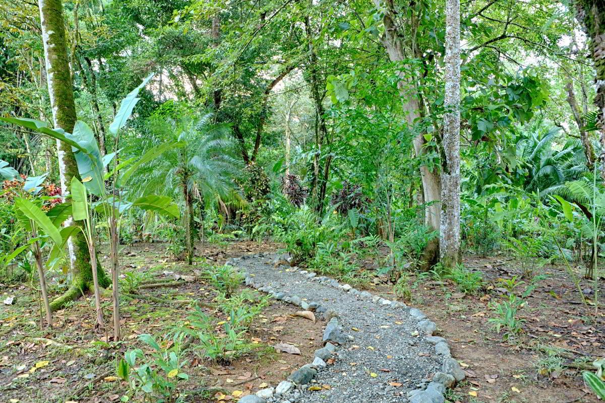 whale-resort-osa-peninsula-puravida-costaballenalovers-villas-for-rent-beachfront-trails