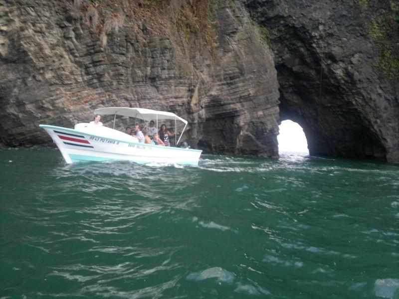 whales-beach-ventanas-windos-costaballenalovers-ballenatales
