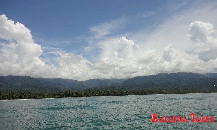 whale-watching-tour-costa-ballena-costa-rica-11