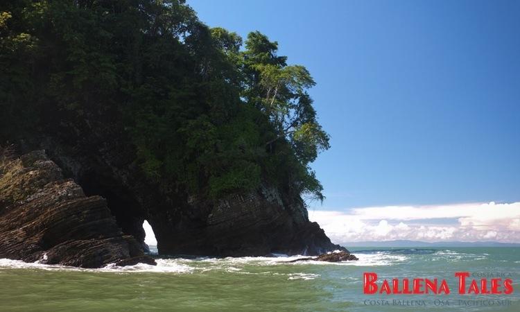 whale-watching-tour-costa-ballena-costa-rica-5