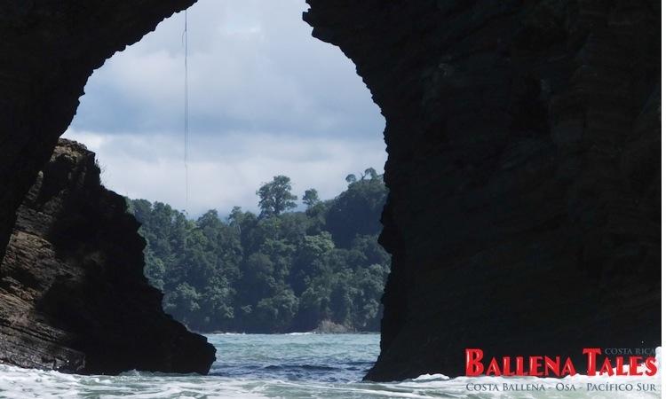 whale-watching-tour-costa-ballena-costa-rica-6