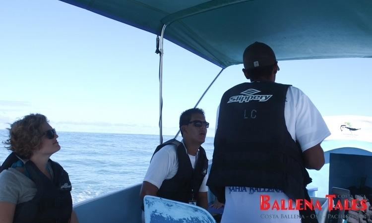 whale-watching-tour-costa-ballena-costa-rica-7