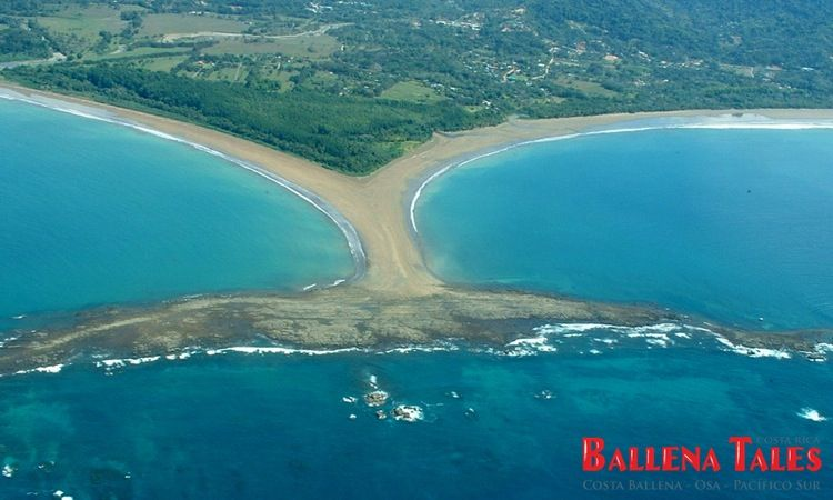 Marino Ballena Nationalpark