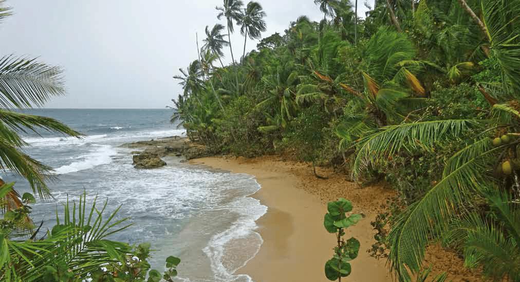 Costa Rica: A Giant Example of Peace, Harmony, and Democracy - Osa