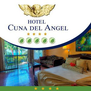 Business Directory Dominical Costa Rica 1