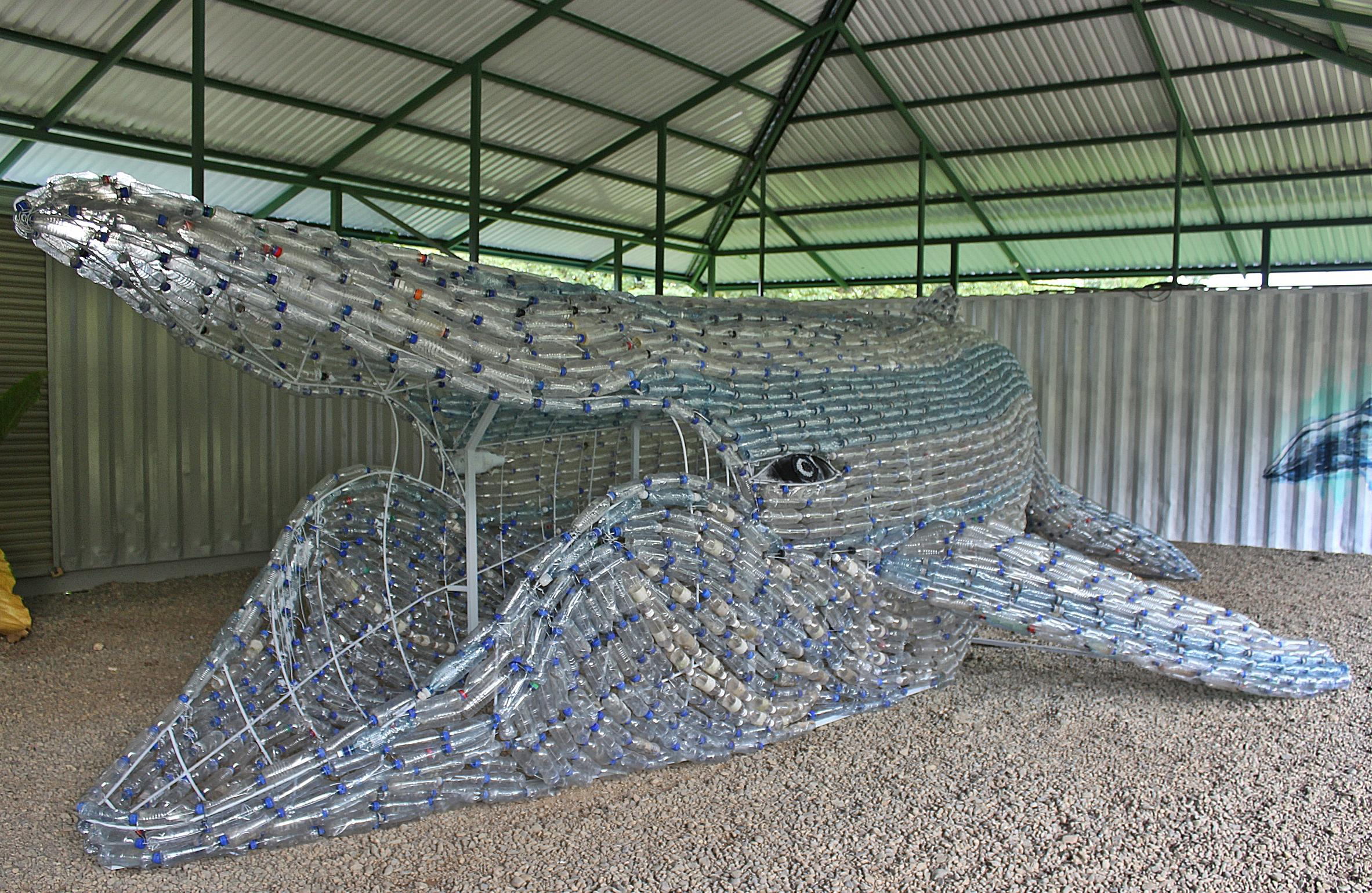 Find the plastic whale in Bahía