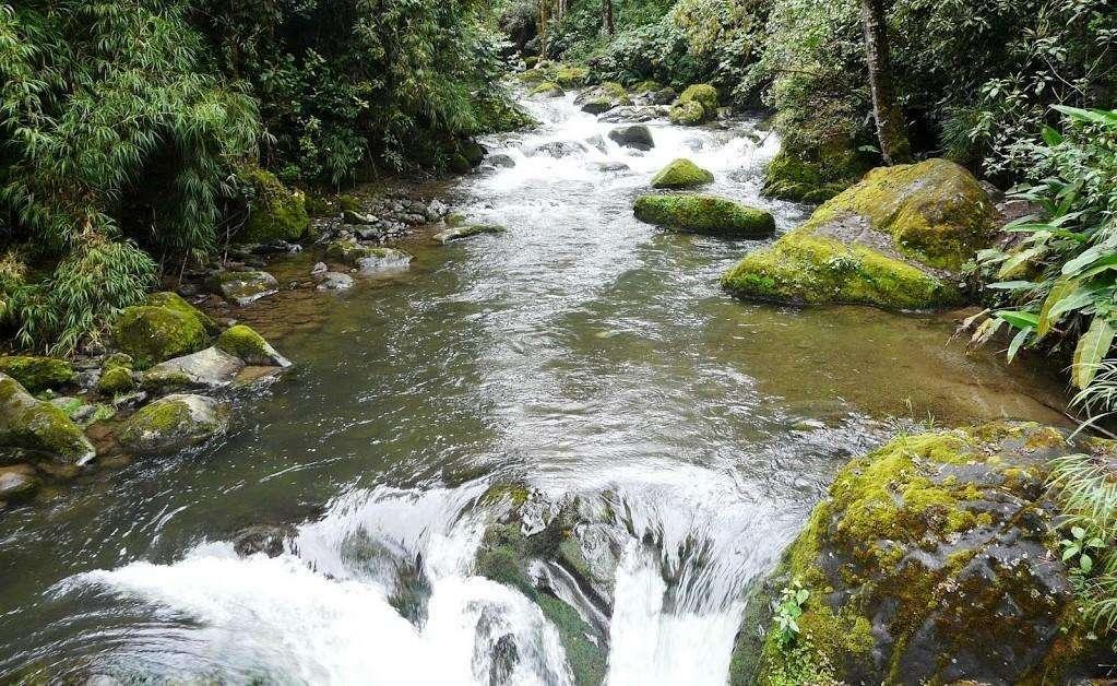 Savegre River, Ecological and Cultural Bastion 2