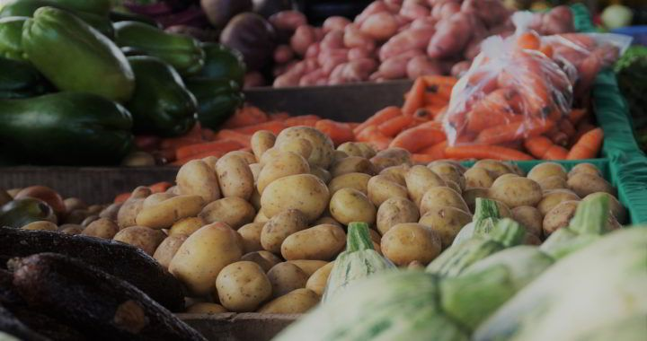 The Dominical Farmers' Market 11