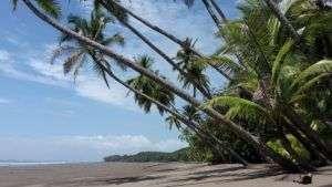 Mejora de la Infraestructura en Parque Nacional Marino Ballena, South Pacific Costa Rica