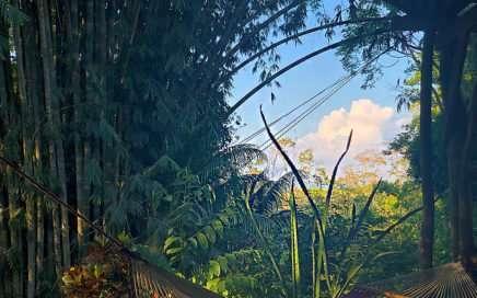 Cascada Verde Hostel Uvita. Enjoy Costa Rica's jungle vibes!