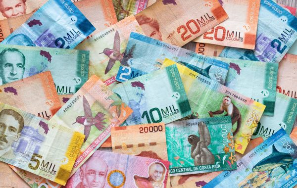 billetes de banco - banknotes