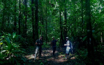 COVIRENAS – Protecting Biodiversity 2
