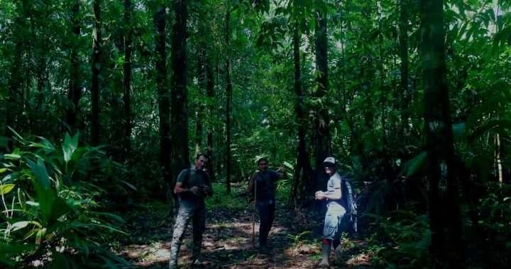 COVIRENAS – Protecting Biodiversity 3