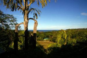 Acerca de los propietarios del Hostel Cascada Verde en Uvita 3